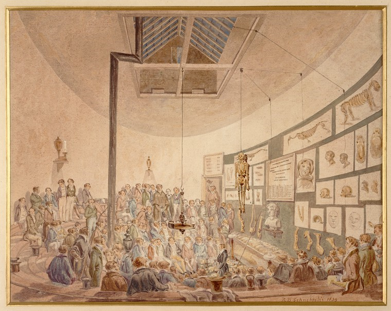 'A Lecture at the Hunterian Anatomy School, Great Windmill St' by Robert Blemmel Schnebbelie (1830). Credit: Wellcome Collection. CC BY.