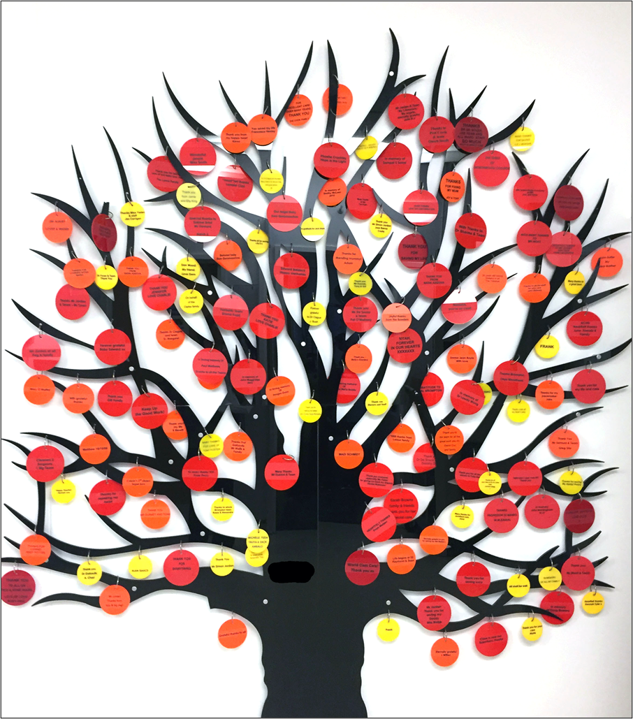 The Royal Brompton Hospital prominently displays perspex trees with messages from patients and relatives, many of which express their gratitude – a visible reminder to staff that they are appreciated. Credit: Giskin Day