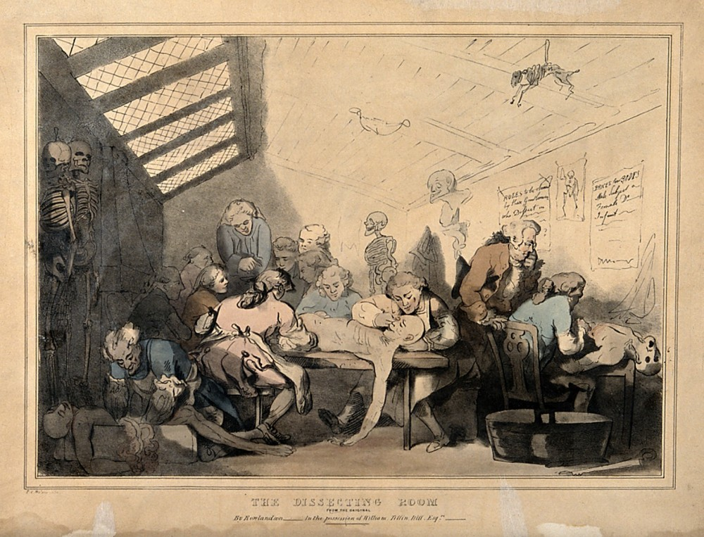 Three anatomical dissections taking place in an attic. Coloured lithograph by T. C. Wilson after a pen and wash drawing by T. Rowlandson. The scene shows a corpse spilling out of a box with intestines dangling out of it, cramped conditions and a rapidly decaying body still being anatomised. Credit: Wellcome Collection.